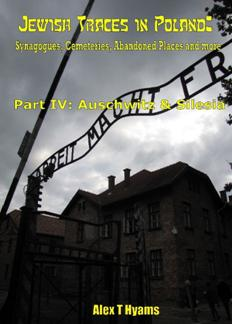 https://www.rarefilmsandmore.com/Media/Thumbs/0010/0010957-e-photobook-jewish-traces-in-poland-part-four-auschwitz-silesia-2019.jpg