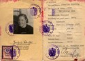 Bild von AUSTRIA:  IDENTITY CARD ISSUED IN OCCUPIED VIENNA  (SCHEFFEL, JOSEFINE - 1949)