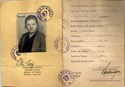 Picture of AUSTRIA:  IDENTITY CARD FOR OCCUPIED AUSTRIA  (Linz - 1946)  (# 4835)