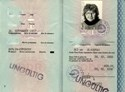 Picture of DDR:  EAST GERMAN PASSPORT  (Berlin - 1990)  (# 5396)